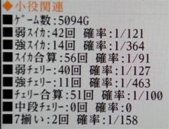 20110129_7
